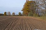 40 acres Hwy 42, Egg Harbor, WI 54209