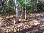 Lot 29 Governors Woods Tr, Town of Egg Harbor, WI 54209