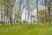 9474 Debroux Ct, Sturgeon Bay, WI 54235