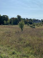 Lot 24 W Cortland Circle, Egg Harbor, WI 54209