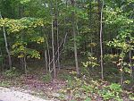 Lot 3 Daisy Patch Rd, Fish Creek, WI 54212