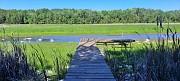 TBD Forest Dr, Forestville, WI 54213