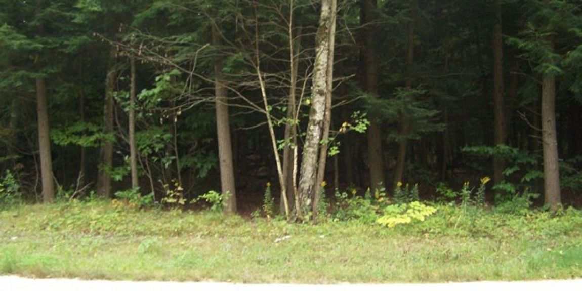 Lot 2 Governors Woods Tr