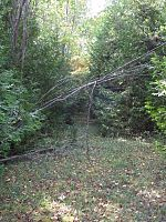 Lot 4 W Kangaroo Lake Rd, Baileys Harbor, WI 54202